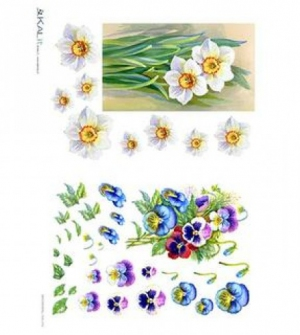 Ριζόχαρτο Λουλούδια 32x45